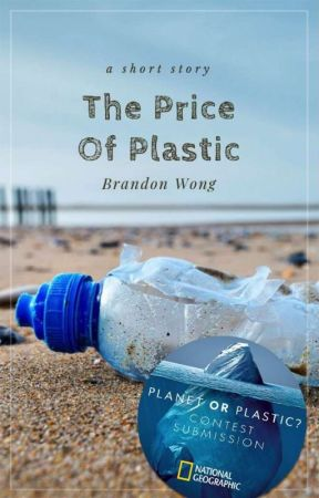 The Price of Plastic by BrandonWong048