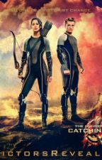After Mockingjay, But In A New Way by RedneckFangirl