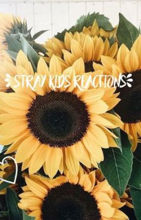 - stray kids reactions by spahgettiregretti