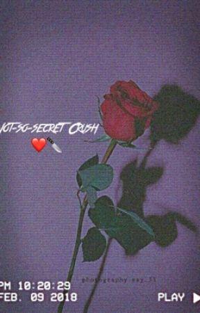 Not-so-Secret Crush by leaky24