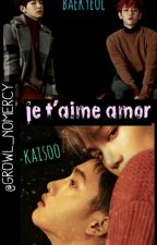 Je t'aime Amor[BAEKYEOL/KAISOO] by growl_nomercy