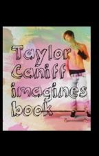 Taylor Caniff Imagines Book by sebibaby