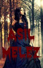 Asil Melez by Asilmelez
