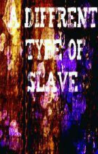 A Diffrent Type of Slave by Diamondinwonderland