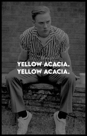 Yellow Acacia [J.Shelby] by wordsofamuggleborn