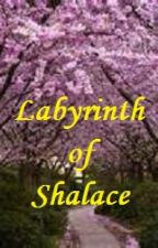 The Labyrinth of Shalace by Skylinger