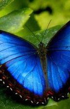 Menelaus Blue by Aquaterran456