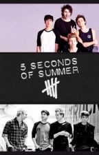 5 Seconds of Summer - Preferences by ERDBEER_MAUSI