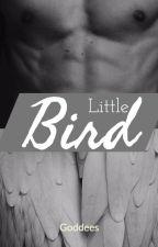 || Little Bird || by Goddees