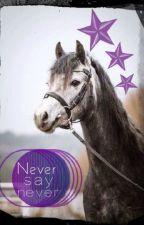 Never say never - Zapomnieć o przeszłości by Iskiereczka123