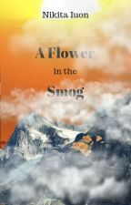 A Flower in the Smog by vilest