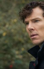 One-shot: Sherlolly by scientific-fangirl