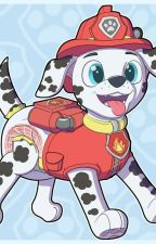paw patrol truth or dare by tomkirkwood