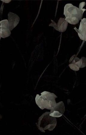 BROKEN. (dramione) by CYPHERFILMS