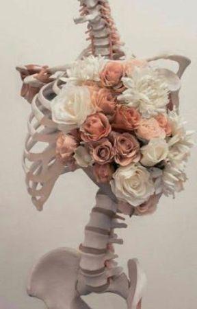 Aesthetics Coraline Wattpad