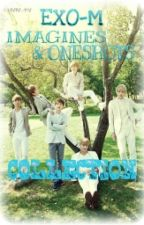 EXO-M's Oneshots & Imagines  by mmayyy