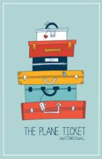 The Plane Ticket by oohdarling