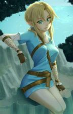Heroine of the Wild (Female Link X Male Reader by Lunar_Legend