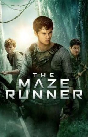 Maze runner Rp (CLOSED) by AMS1127