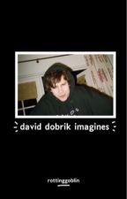 d.d imagines  by rottinggoblin