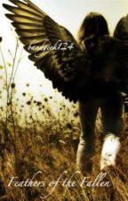 Feathers of the Fallen by bandgeek124