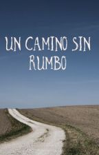 Un camino sin rumbo by lovealcoholic