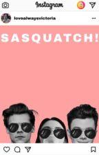 SASQUATCH! [Instagram Story] by lovealwaysvictoria