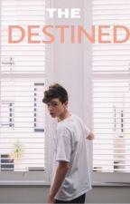 THE DESTINED | jmb by birlemschild