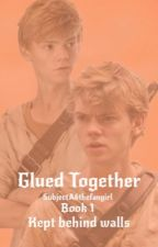 Kept Behind Walls {Newt x Reader} ~Glued Together book 1~ by subjectA6thefangirl