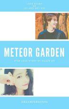 Meteor Garden // Huaze Lei by DreamPerson04