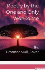 Poetry by the One and Only Wonko Me by BrandonMull_Lover