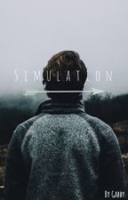 Simulation by Tempest109
