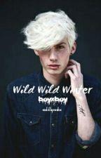 Wild Wild Winter ❆ bxb ❆ by ftmegsalex