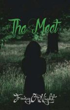 The meet.. by FairyOfNight