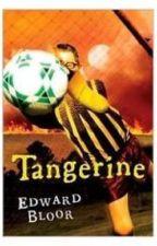 Tangerine by muyaka