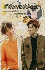 IF We Meet Again by SueHninSi04