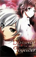 Destined to be together(A Danny Phantom Fanfic)ON HOLD by YnaHamada28