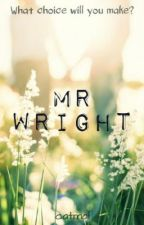 Mr Wright **ON HOLD** by catmai