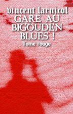 Gare au Bigouden Blues ! / Tome rouge by vince22000