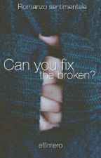 Can you fix the broken? by effimero