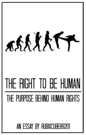 human right essay