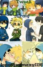 Tweek + Craig (boyxboy) by crazymazy1116