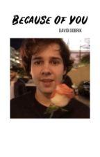 Because Of You [2] | David Dobrik by lostindobrik