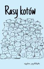 Rasy Kotów by kociaraXL