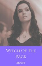Witch Of The Pack (Rewrite) by insaneredhead