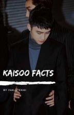 kaisoo facts by isalutekai