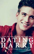 Dating Harry [BoyxBoy] by ellesugi