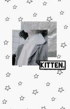 Kitten by taeiwi