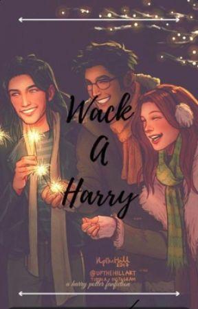 Wack-A-Harry ( A Harry Potter Fanfiction) by Tidela471