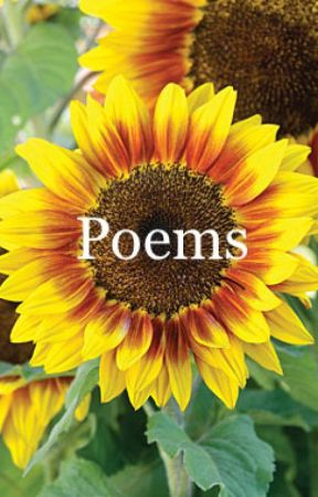 Poems by xxnoctissomniumxx